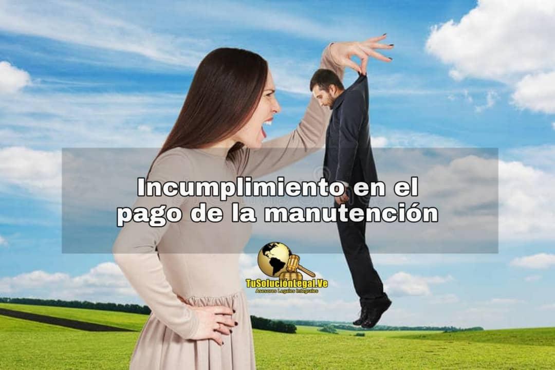 Incumplimiento en el pago de la manutención, incumplimiento, manutención, obligación de manutención, aumento de manutención, revisión de manutención, pago, padre, deudor, deuda, irresponsable, LOPNNA, menor, hijo, padre, obligación, pensión de alimentos, abogados venezuela, ana Santander, tusolucionlegal.ve